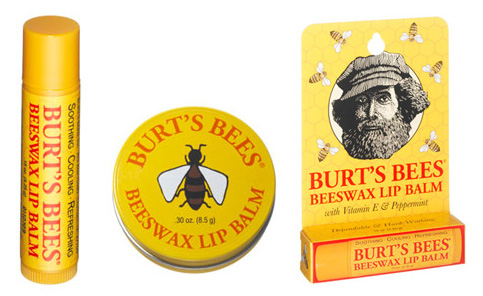 Job Crafting at Burts Bees Case Study Solution & Analysis