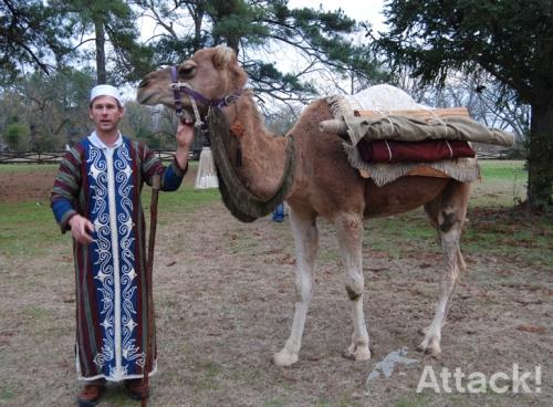 Brand Ambassador-Upenn-Museum-Camel